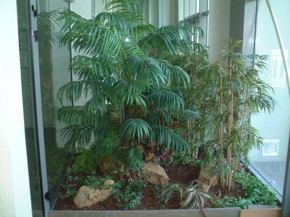 Hall sur les quai de saone lyon plantes artificielles for Arbre exotique exterieur